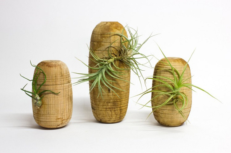 Elise Cameron Smith Wooden Planters