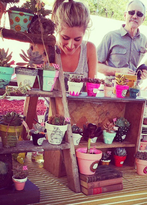 Birds Nests for Hair painted succulent pots markets