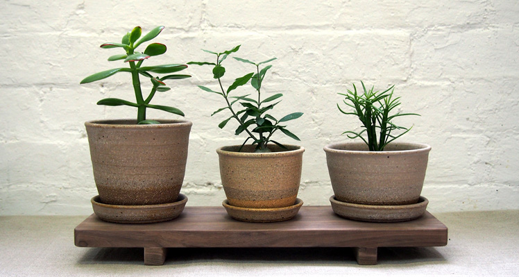 Wingnut & Co. ceramic planters