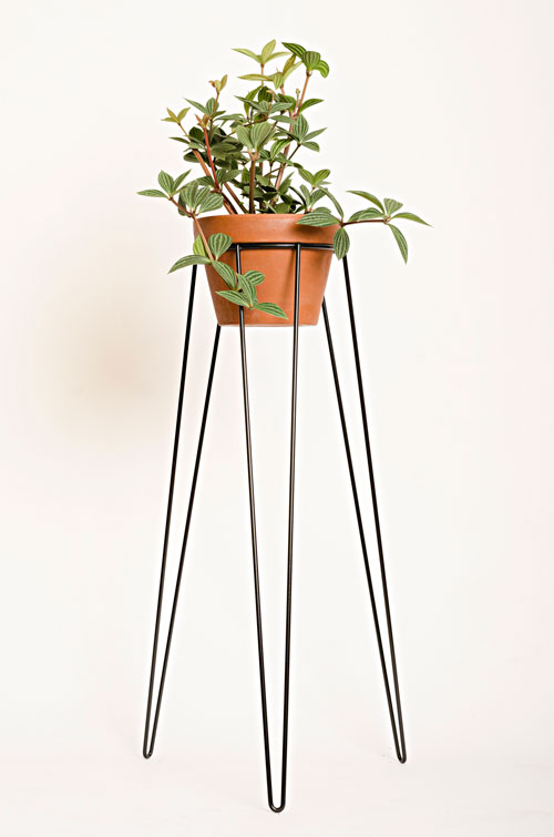 Wirely plant stands