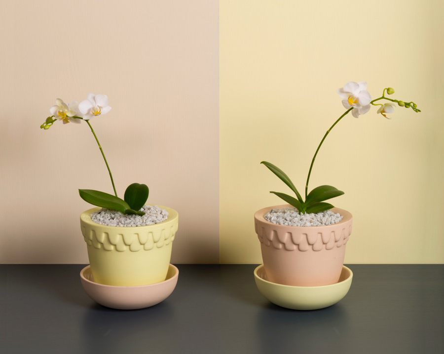 Mix and Match Planter Pots Angus and Celeste