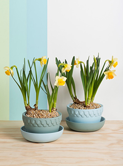Featured Product: Mix and Match Planter Pots by Angus & Celeste