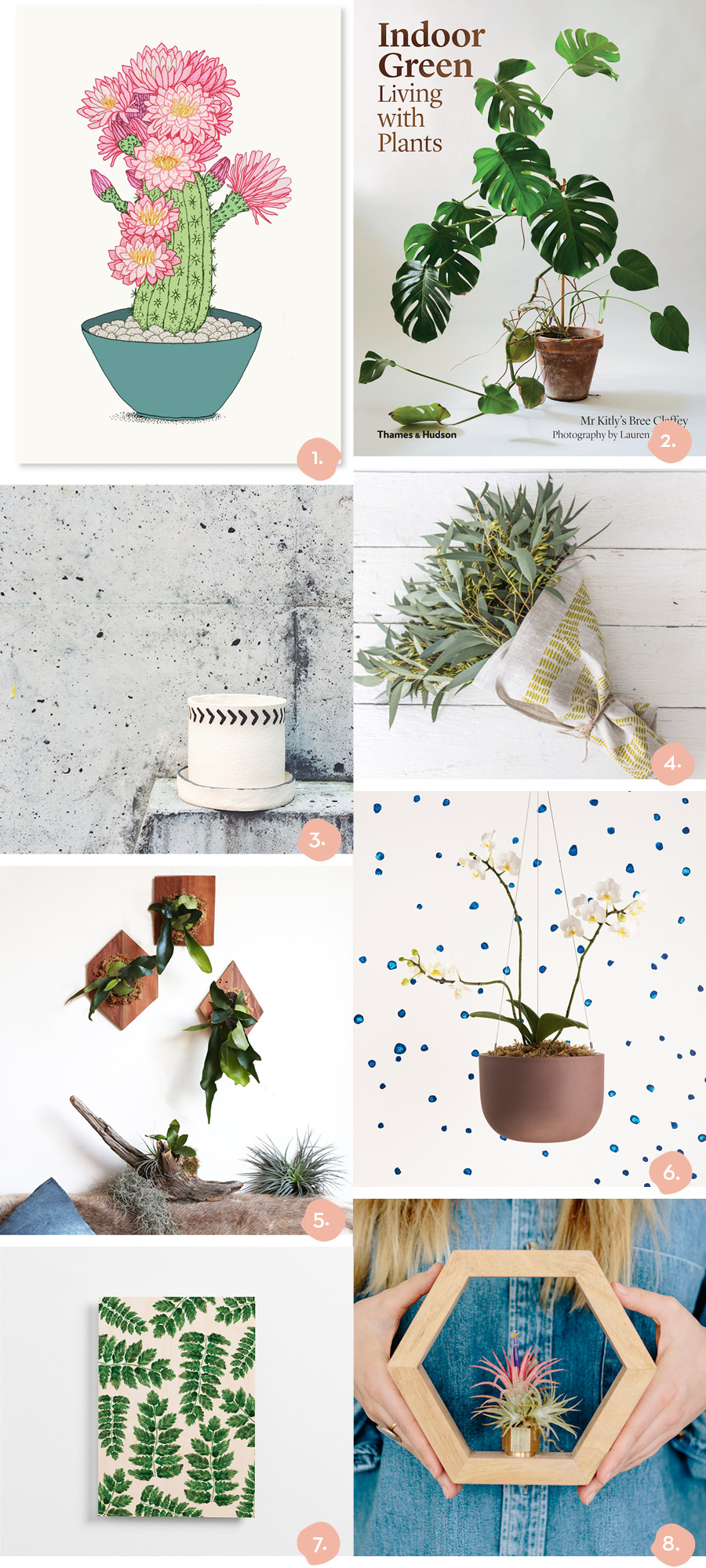 Finders Keepers Blog Gift Guide Homewares and Plants with Staghorn