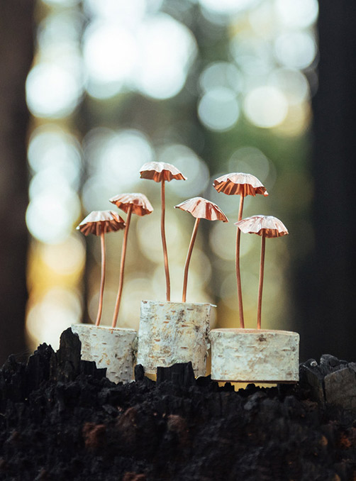 Feature Product:  Copper Mushrooms By Jaccob McKay Studios